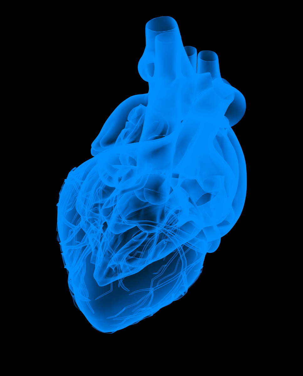 Phase II Clinical Trial for NP202 Heart Failure Drug