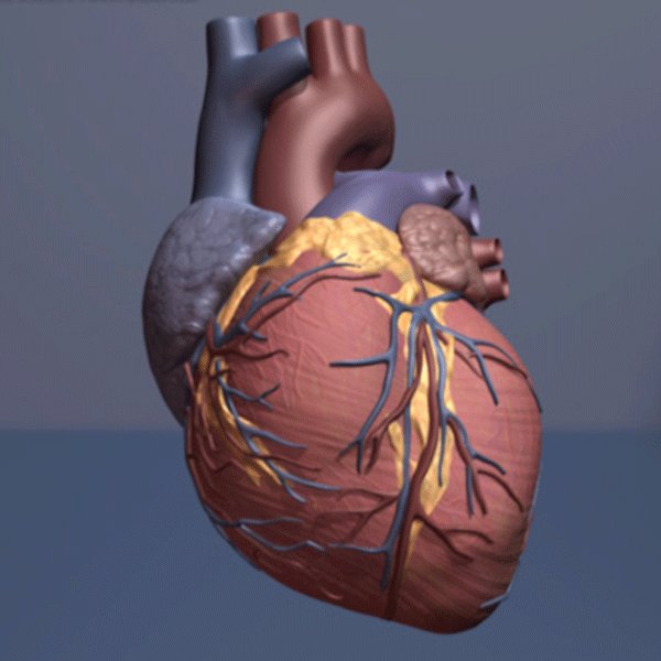 Good communication helps improve outcomes for heart patients - credit AHA