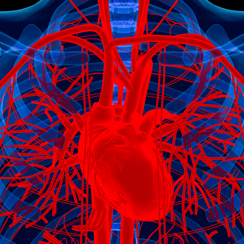 New Nano-Polymer Could Prevent Heart Failure