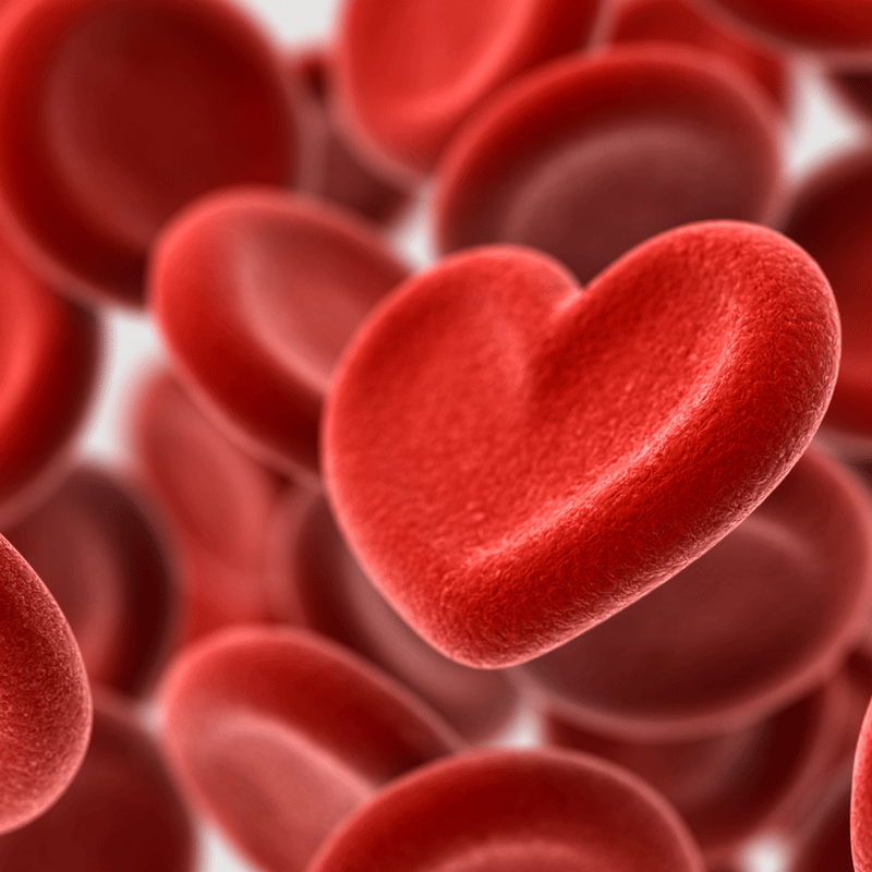 Non-O Blood Groups Associated with Greater Risk of Heart Attack