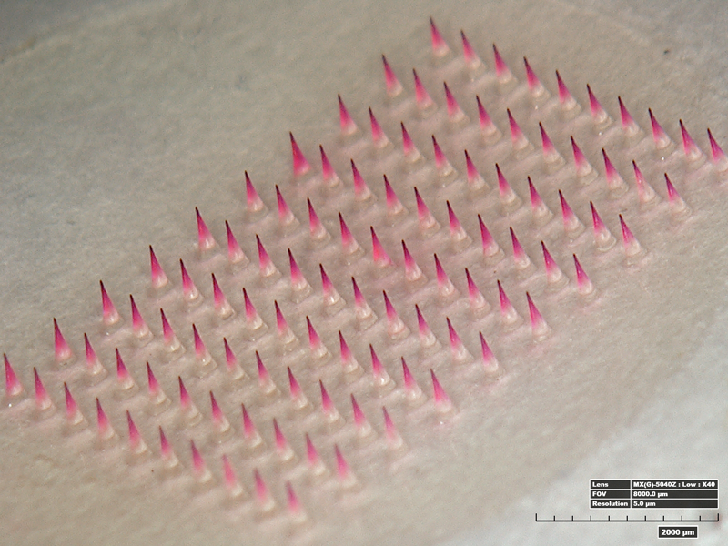 microneedle patches with influenza vaccine