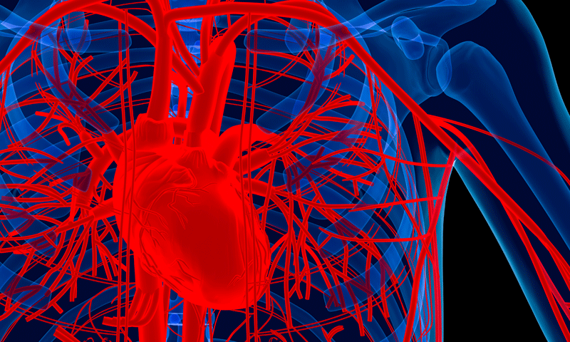 Investigational Extravascular ICD System